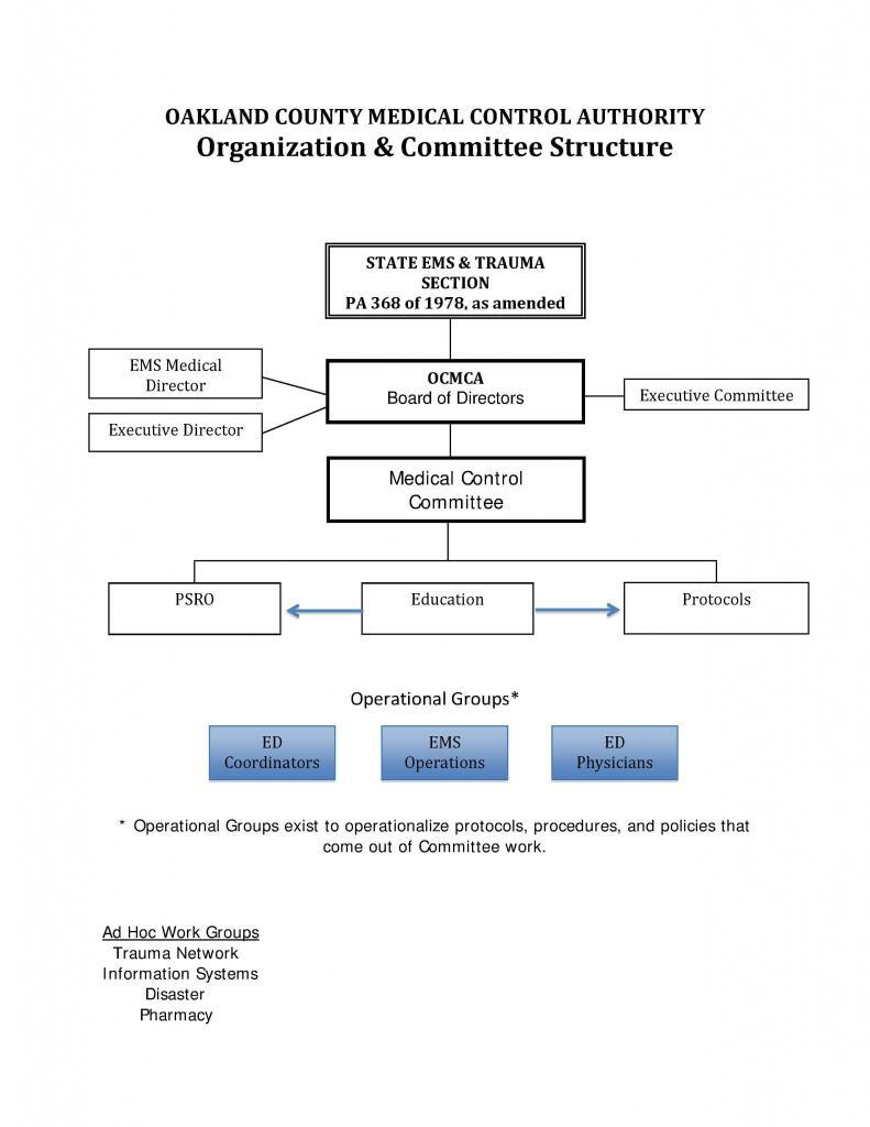 Org-Comm-Structure-2012